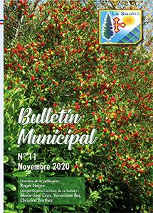 bulletin n°11 novembre 2020